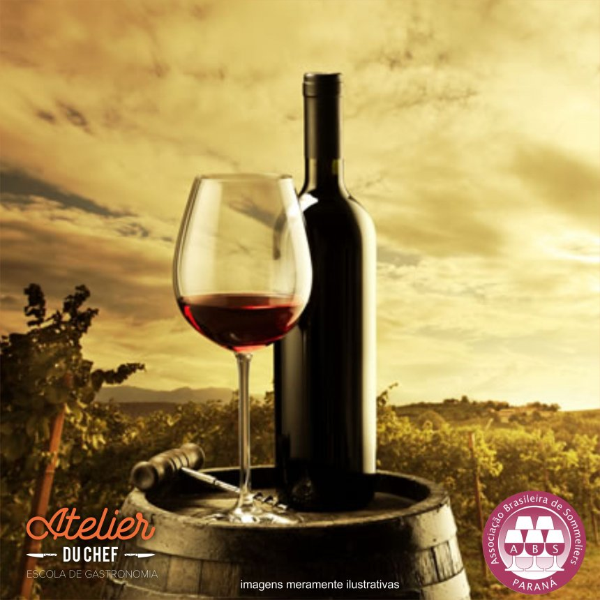 Conhecendo o Mundo do Vinho.jpg