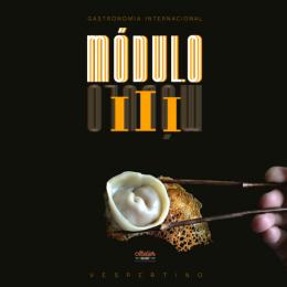MOD III VESPERTINO.png
